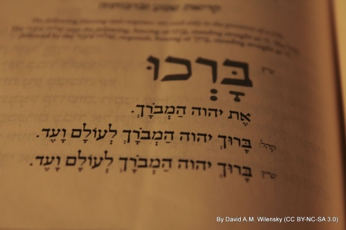 https://davidsaysthings.wordpress.com/2011/10/29/my-first-observations-about-the-koren-mesorat-harav-siddur/