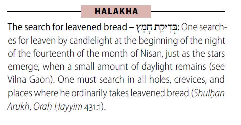 Koren Steinsaltz Talmud 5