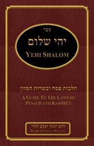 Yehi shalom guide book Pesach